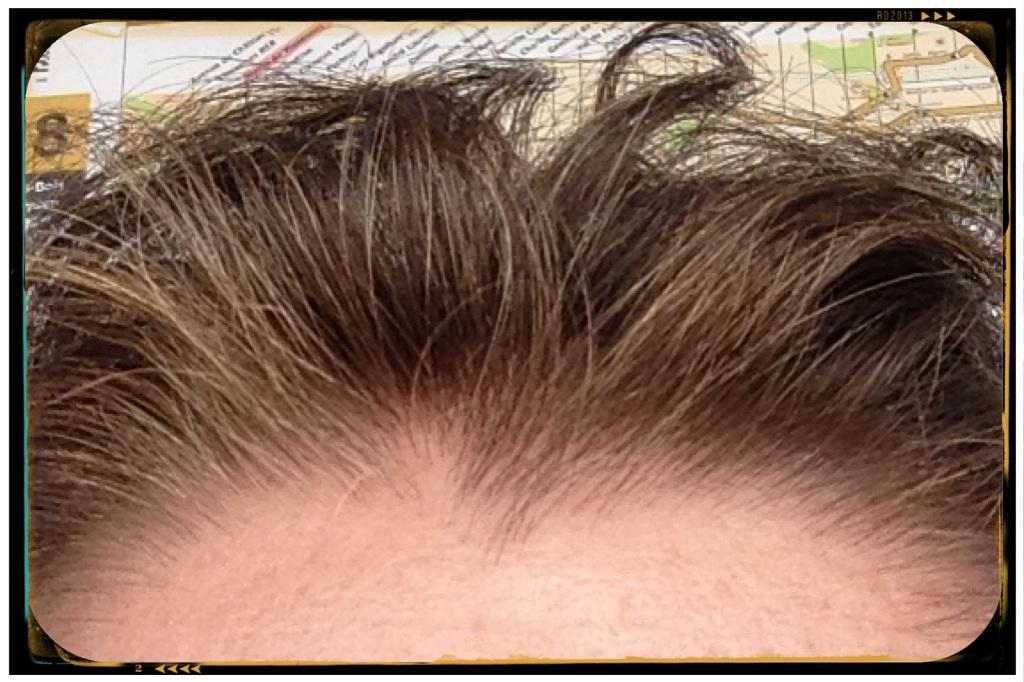 aprs_coloration vgtale fini les cheveux blancs - Coloration Naturelle Cheveux Blancs