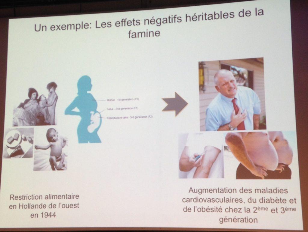 Hérédité effets négatifs famine