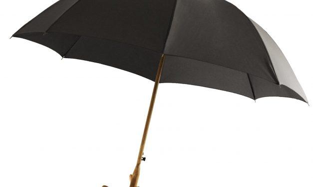 Le parapluie – Savoir écouter les signes