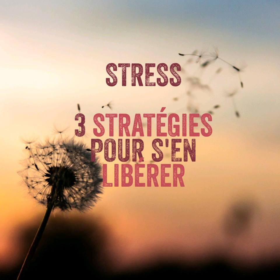 Stress - Atelier